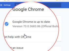 Google Chrome version check